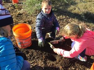 Students planting plants